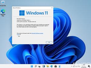 windows11-netwrktips